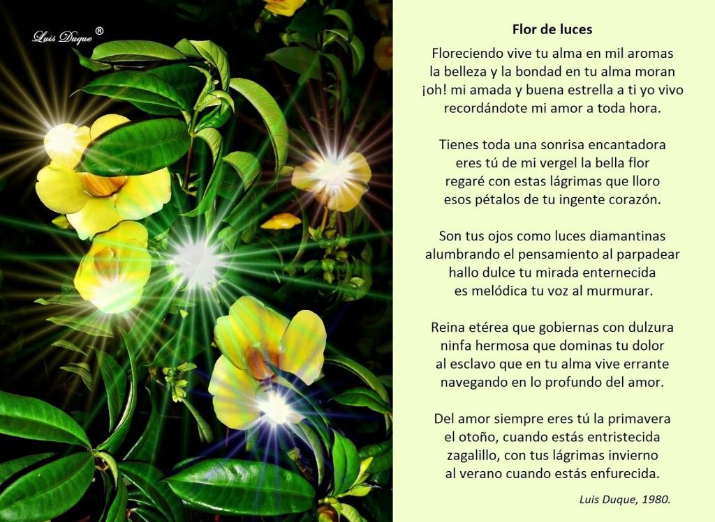 Flor de luces